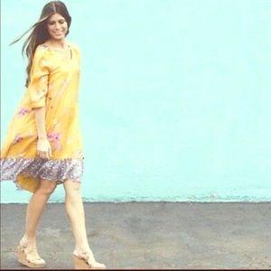 Anthropologie Vanessa Virginia silk shift dress xs